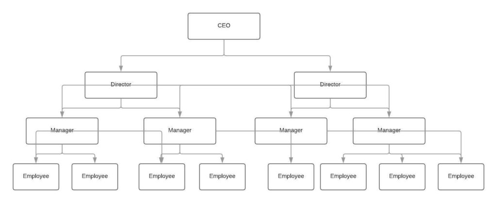 functional organizational structure graph